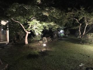 中庭ライトアップ.jpg